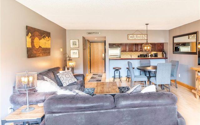 Spruce Lodge Condo 291 - photo 5