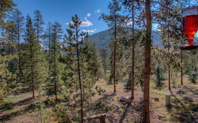Pines At Keystone Condo 2043 - photo 14