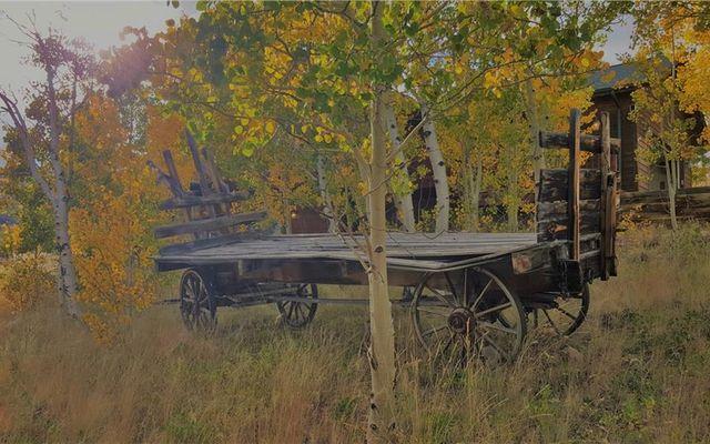 3207 High Creek Road - photo 32