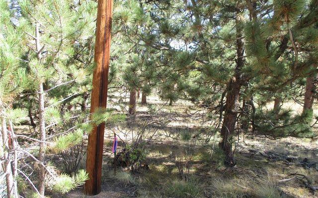 166 Haystack Road - photo 12