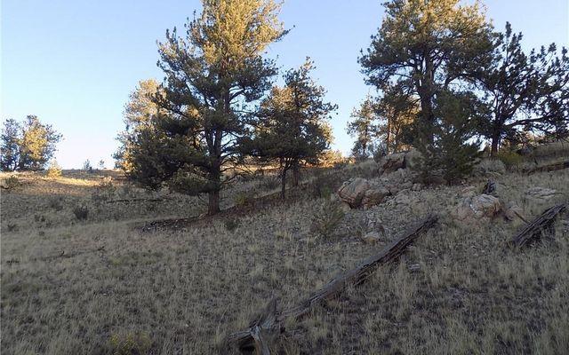 603 Goldenburg Canyon Road - photo 7
