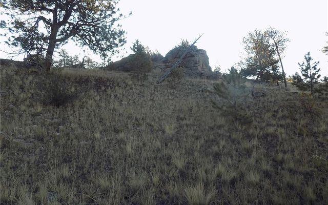 603 Goldenburg Canyon Road - photo 9