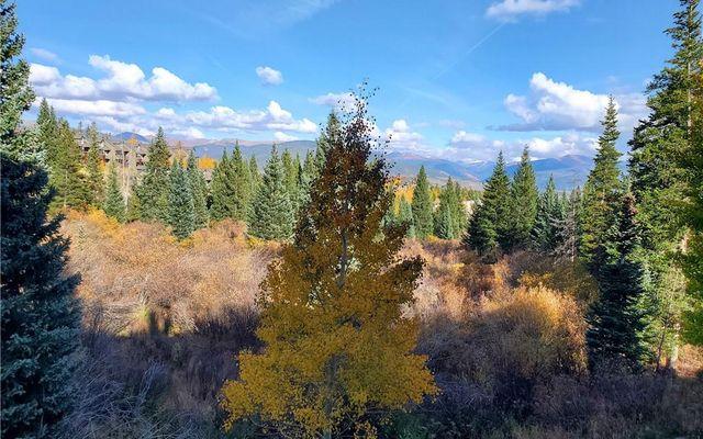 Buffalo Ridge Condo 105 - photo 20