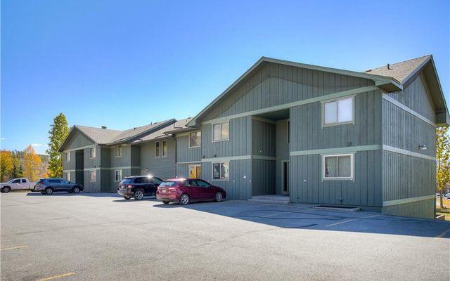 Dillon Valley East Condo 101 - photo 20