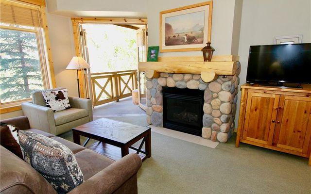 Tucker Mountain Lodge Condo 203 - photo 8