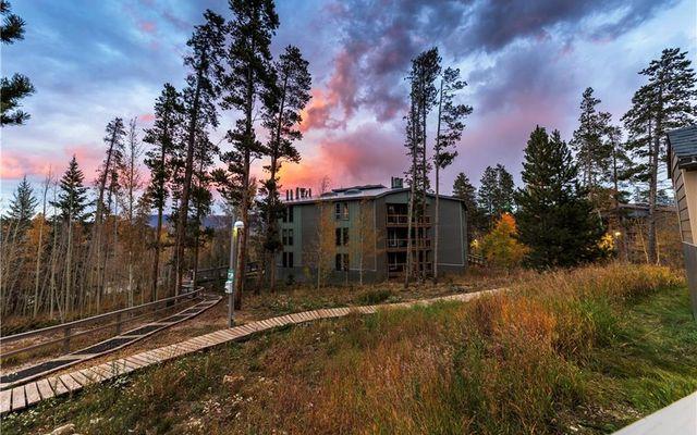 Treehouse Condo 305b - photo 1