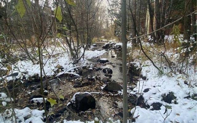 Cabin Creek Condo 2 - photo 3