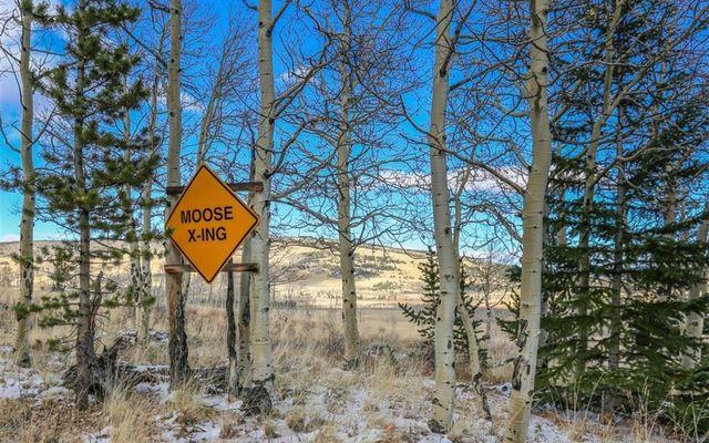 240 Meadow Drive - photo 34