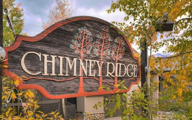 Chimney Ridge Townhomes 516 - photo 31