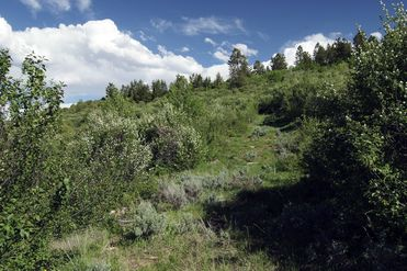 620 Jouflas Ranch Road Wolcott, CO 81655 - Image 1