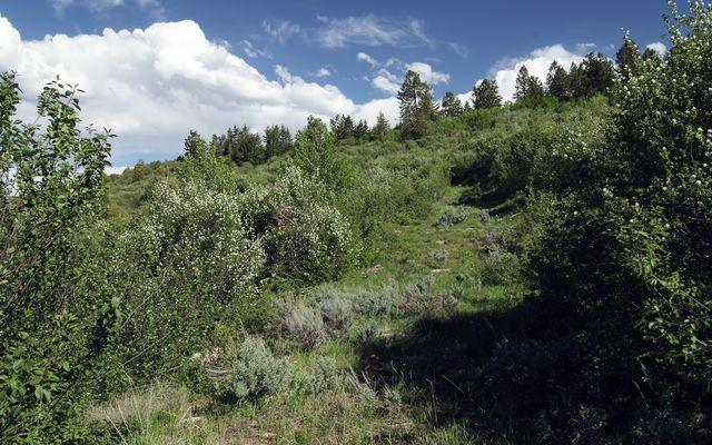 620 Jouflas Ranch Road Wolcott, CO 81655