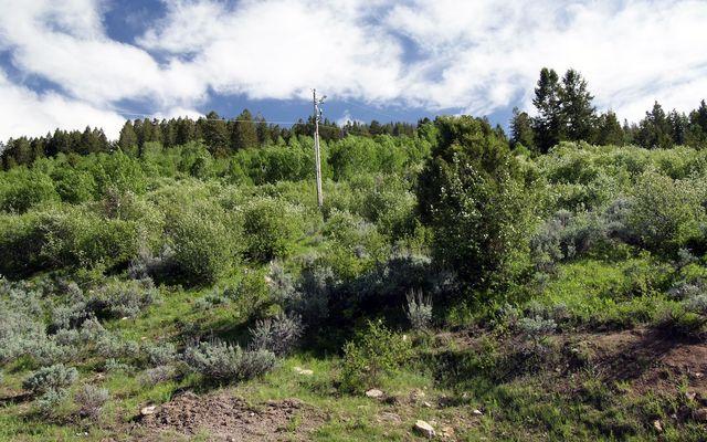 620 Jouflas Ranch Road - photo 3