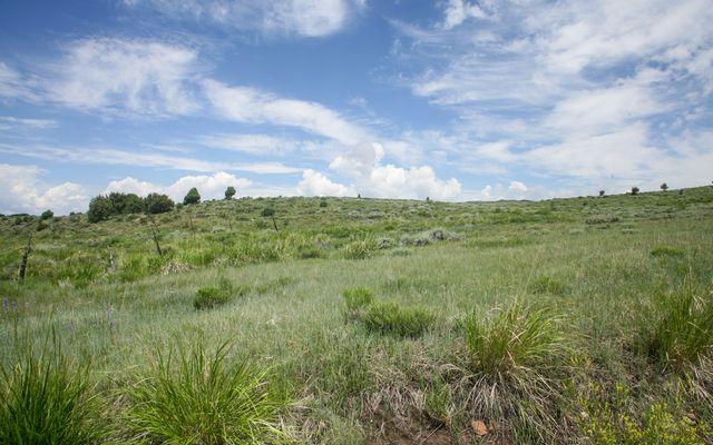 3566 Territory Trail - photo 10