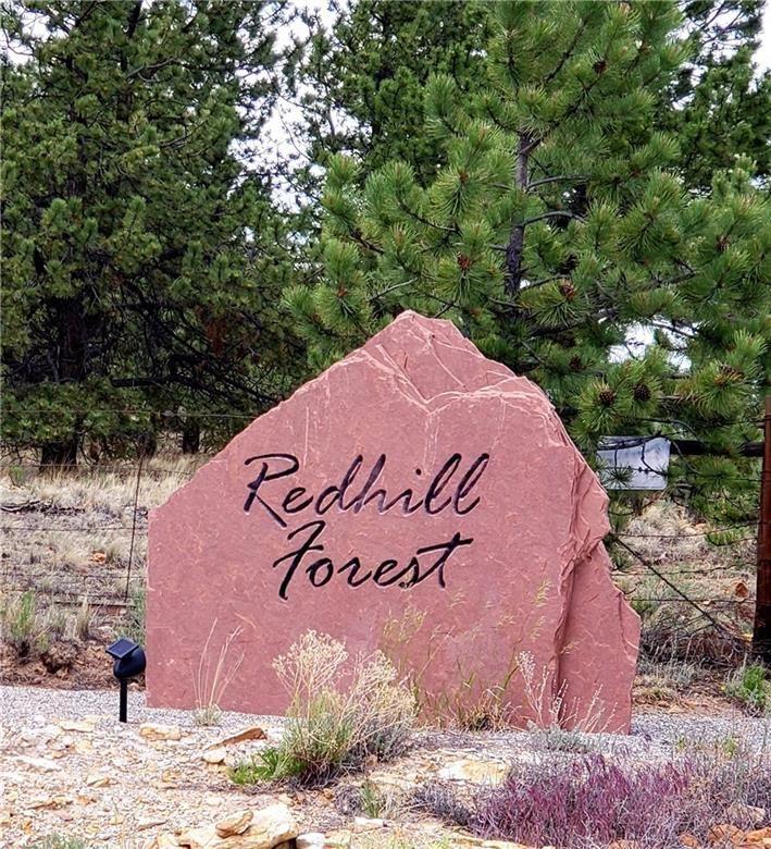 1445 REDHILL ROAD FAIRPLAY, Colorado 80440