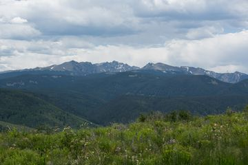 713 Webb Peak Edwards, CO 81632