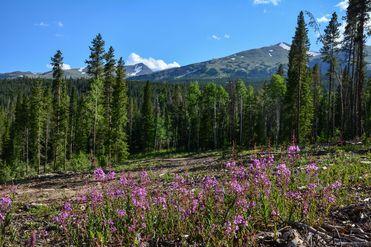 0121 Barton Ridge DRIVE BRECKENRIDGE, Colorado 80424 - Image 1