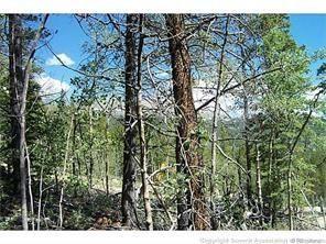 165 Spruce STREET ALMA, Colorado 80420