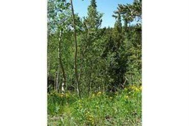 48 Spruce STREET ALMA, Colorado - Image 21
