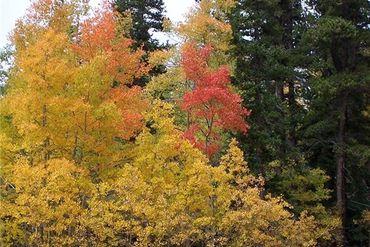 526 TATANKA TRAIL COMO, Colorado - Image 11