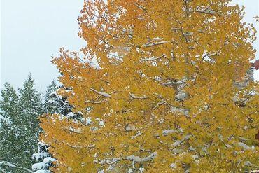 526 TATANKA TRAIL COMO, Colorado - Image 16
