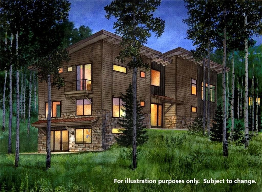 0 Young's Preserve ROAD SILVERTHORNE, Colorado 80498
