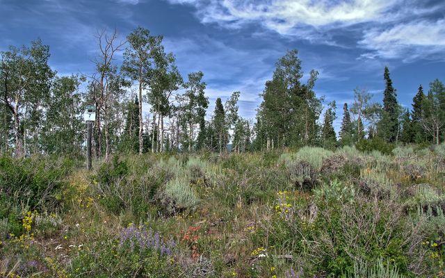 1435 Gore Trail Edwards, CO 81632
