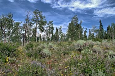 1435 Gore Trail Edwards, CO 81632 - Image 1