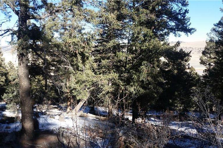 0 Middle Fork Vista FAIRPLAY, Colorado 80440