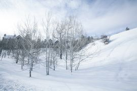149 Holden Road Beaver Creek, CO 81620 - Image