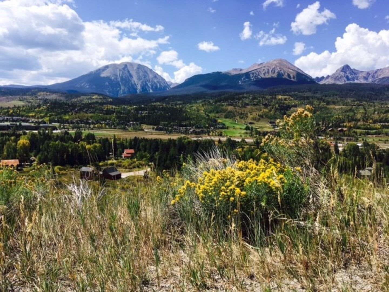 223 Hillside DRIVE SILVERTHORNE, Colorado 80498
