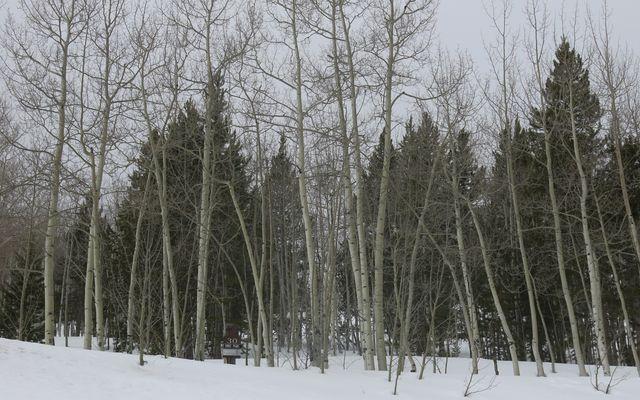 2635 Hunters Knob Road - photo 12